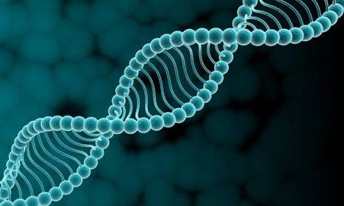 Моча сине-зеленого оттенка является также симптомом редкого генетического заболевания - семейной гиперкальциемии