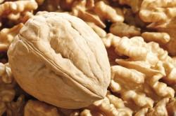 Грецкий орех при гипотиреозе