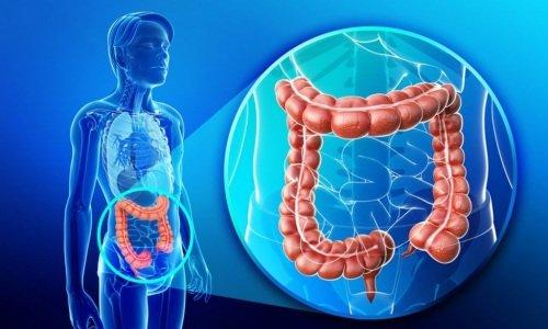 Мотилиум и Мотилак помогают ускорить прохождение пищи в кишечник