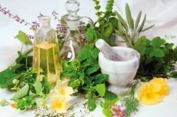 Травяные сборы против стафилококка