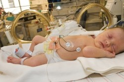 Вес ребенка менее двух килограмм - противопоказание к вакцинации