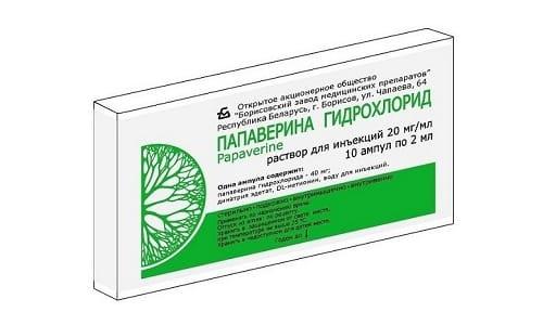 Папаверин дает спазмолитический эффект. Ему присущи гипотензивные и противосудорожные качества